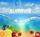 Tropischer Sommerhintergrund vektor abbildung