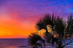 Tropischer Sonnenaufgang Lizenzfreie Stockfotografie