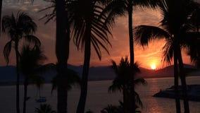 Tropischer Sonnenaufgang stock footage