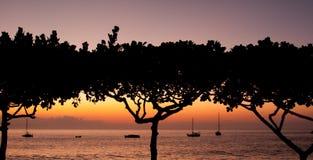 Tropischer Sonnenuntergang Stockfotografie