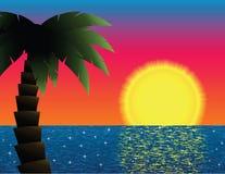Tropischer Sonnenuntergang Lizenzfreies Stockfoto