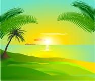 Tropischer Sonnenuntergang vektor abbildung