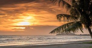 Tropischer Sonnenuntergang mit Palmeschattenbild Lizenzfreie Stockfotografie