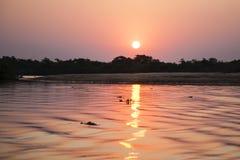 Tropischer Sonnenuntergang: Purpurroter/Rosa-Himmel, Purpurrotes/Rosa-Wasser Lizenzfreie Stockfotografie