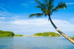Tropischer Strand Lizenzfreie Stockfotos