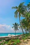 Tropischer Strand auf karibischem Meer Stockbild