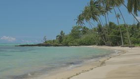 Tropischer Strand auf Südseite von Upolu, Samoa-Insel stock video footage