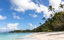 Tropischer Strand auf Schattenbildinsel, Seychellen Lizenzfreies Stockbild