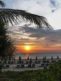 Tropischer Strand bei Sonnenuntergang mit Palme Stockbilder