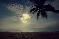 Tropischer Strand der schönen Fantasie mit Stern in den nächtlichen Himmeln, Vollmond Stockfoto