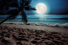 Tropischer Strand der schönen Fantasie mit Stern und Vollmond in den nächtlichen Himmeln Lizenzfreie Stockfotografie