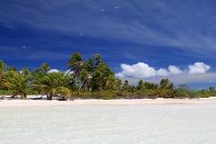 Tropischer Strand des weißen Sandes Stockbild
