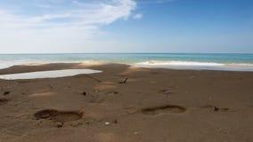 Tropischer Strand im Sonnenuntergang stock footage