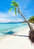 Tropischer Strand Malcapuya Lizenzfreies Stockbild