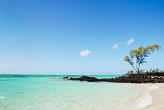 Tropischer Strand in Mauritius Stockfotografie