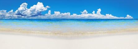 Tropischer Strand mit Exemplarplatz Stockfotos