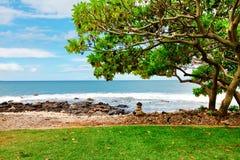 Tropischer Strand mit großem Baum und blauem Wasser. Maui. Hawaii. Lizenzfreies Stockbild