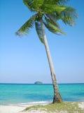 Tropischer Strand mit Kokosnussbaum Stockfotos