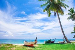 Tropischer Strand mit Kokosnusspalme Stockfoto
