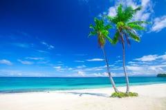 Tropischer Strand mit Kokosnusspalme Stockfotos