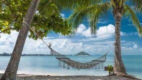 Tropischer Strand mit KokosnussPalmen und Hängematte Stockbilder