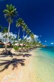 Tropischer Strand mit mit KokosnussPalmen und Landhäusern auf Upolu, Stockfotografie
