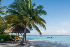 Tropischer Strand mit Palme und Hängematte nahe dem Ozean bei Malediven stockfotos