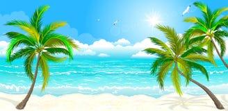 Tropischer Strand mit Palmen lizenzfreie abbildung