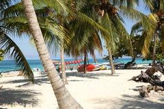 Tropischer Strand mit Palmen und Booten auf dem weißen Sandstrand mit Raum für Text stockbild