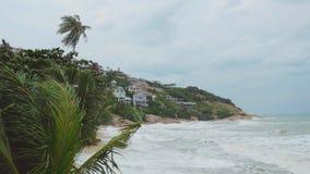 Tropischer Strand mit schweren wellenartig bewegenden Palmen in einem Sturm vor einem irreredenden Meer Stockfotos