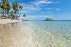 Tropischer Strand mit Smaragdwasser- und Kokosnussbäumen Stockfoto