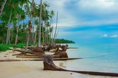 Tropischer Strand nach Tsunami Stockbild