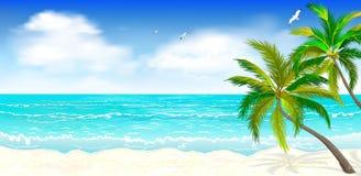 Tropischer Strand, Palmen 1 stock abbildung