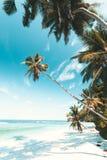 Tropischer Strand in Seychellen lizenzfreies stockfoto