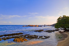 Tropischer Strand in Seychellen am Sonnenuntergang Stockfoto