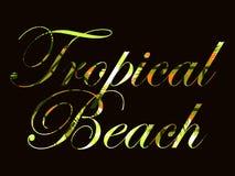 Tropischer Strand Text mit Locken von Palmblättern Schönes Schreiben auf einem schwarzen Hintergrund Vektor Lizenzfreies Stockfoto