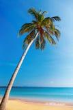 Tropischer Strand, Thailand Stockfotografie
