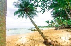 Tropischer Strand Thailands, Patong Phuket Lizenzfreie Stockfotos