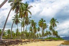 Tropischer Strand und grauer Himmel stockfotos