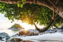 Tropischer Strand und Hängematte in Sommer Freizeit und in Entspannungskonzept lizenzfreies stockfoto