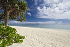 Tropischer Strand und Lagune. Aitutaki, Koch Islands Lizenzfreie Stockfotografie