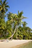 Tropischer Strand und Meer mit KokosnussPalme auf blauem Himmel in Thailand Lizenzfreie Stockfotos