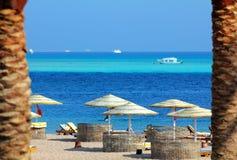 Tropischer Strand zwischen Palmen Stockbilder