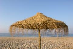 Tropischer Strandregenschirm Stockfotografie