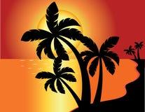 Tropischer Strandsonnenuntergang lizenzfreie abbildung