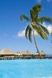 Tropischer Strandurlaubsort auf moorea in den Südseen stockfoto