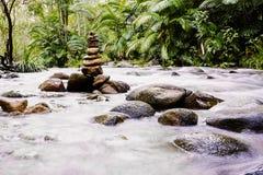 Tropischer Strom mit Zensteinen Stockbilder