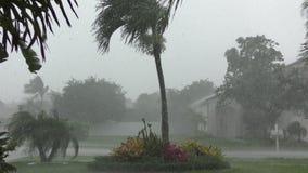Tropischer Sturm in 4K stock footage