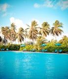Tropischer Swimmingpool Stockfoto