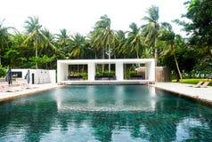 Tropischer Swimmingpool mit sunbeds Stockfotografie